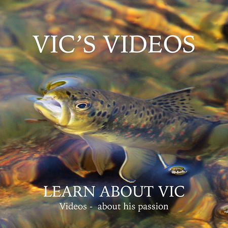 VIC'S VIDEOS