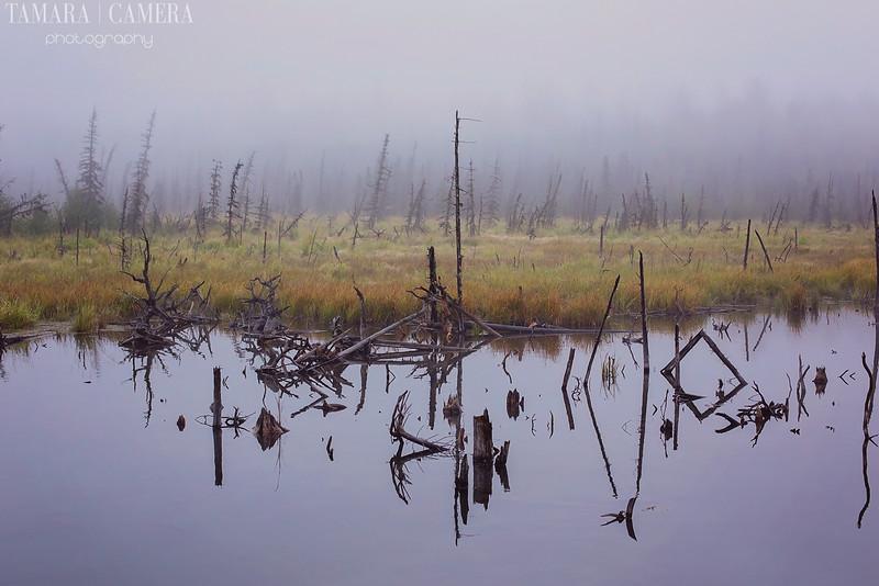 Eagle River6-2-2.jpg