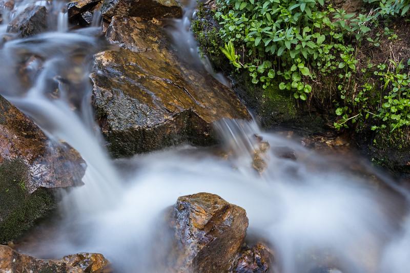 Fancy Creek