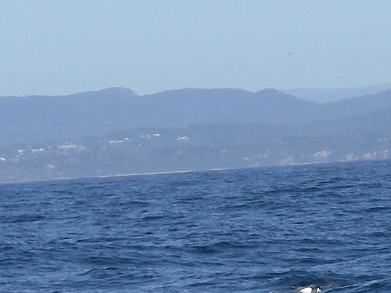 Sydney trip and Mirimbula 095.JPG