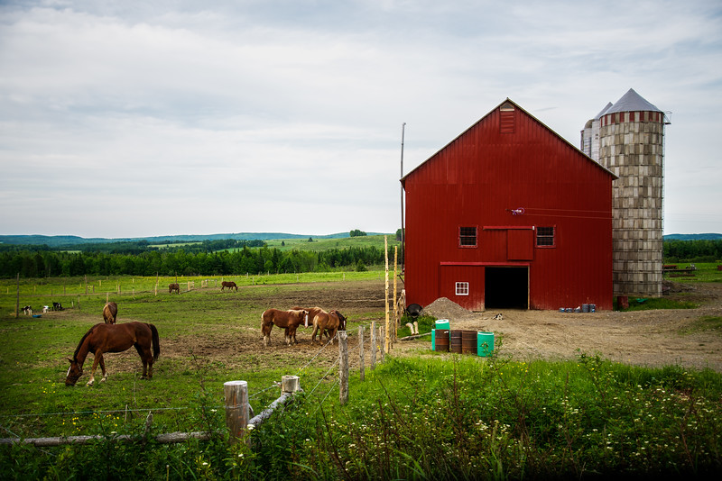 Red Amish Barn-1.jpg