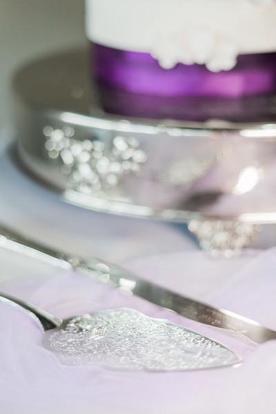 ELP1104 Amber & Jay Orlando wedding 2378.jpg