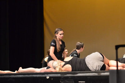 Everyday Shakespeare: Viewmont's Spring Dance Concert