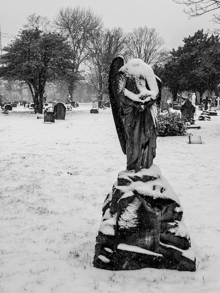Snow in Lambeth Cemetery