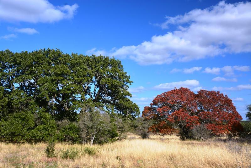 Autumn at the Eads Ranch - 010a.jpg
