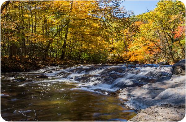 Potts Creek/ Alleghany County