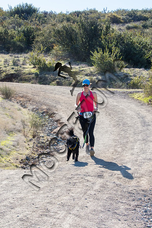 Sycamore Canyon - Trail Races