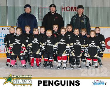 SSS Timbits Penguins