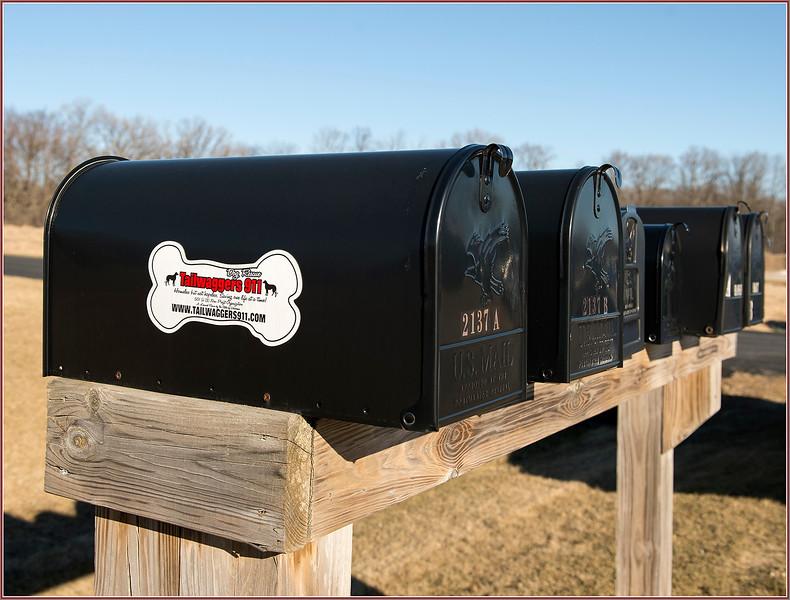 170218_0042 Edited Mailbox row.jpg