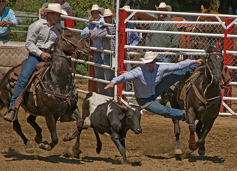 COOMBS RODEO-2009-3513A.jpg