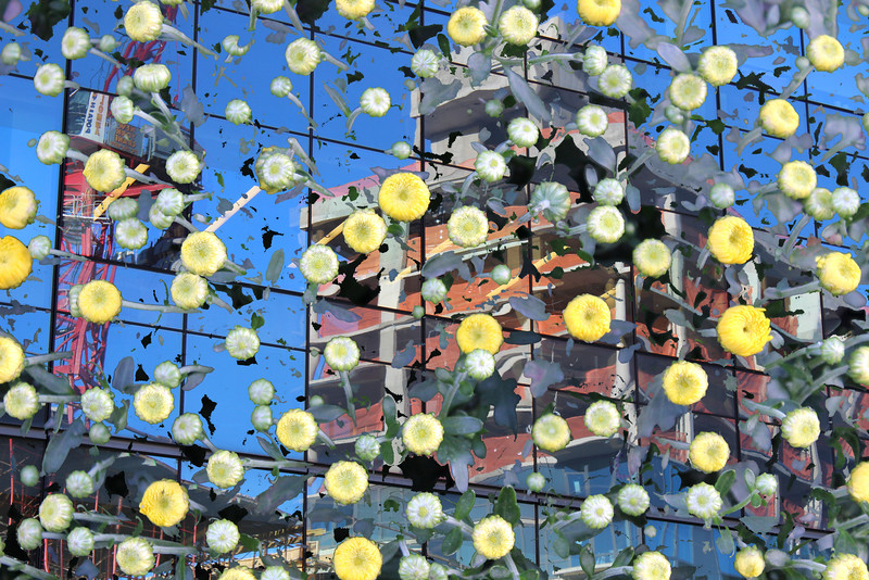 Long Island City (115) flower power .jpg