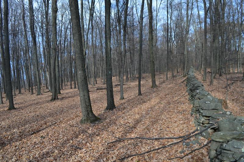 View along the same wall facing north.