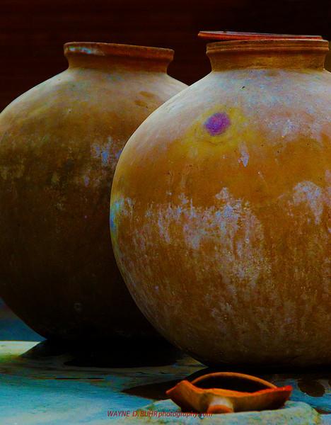 INDIA2010-0208A-06A.jpg