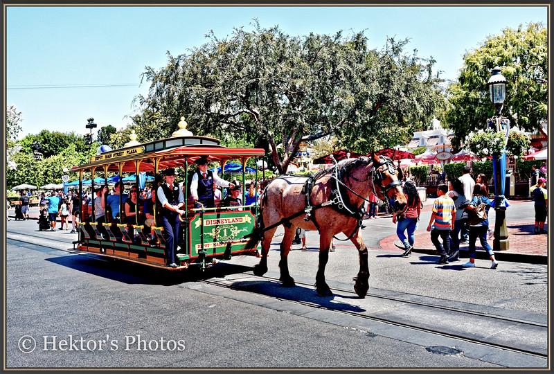 Disneyland Leica Q-7.jpg