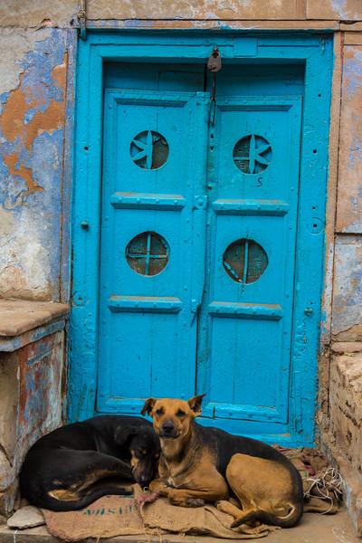 India-365.jpg