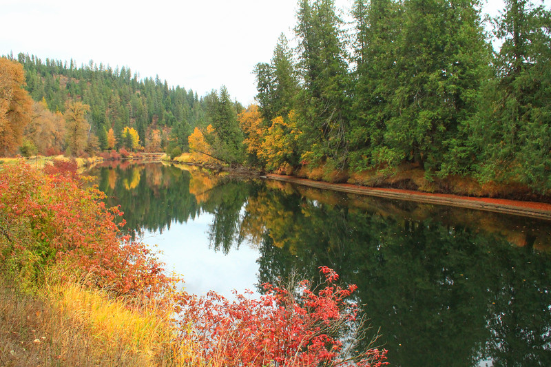 fall 2019 st maries river-1680.jpg