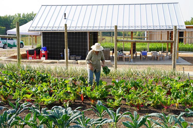 Arboretum Farm 8-19-18.JPG