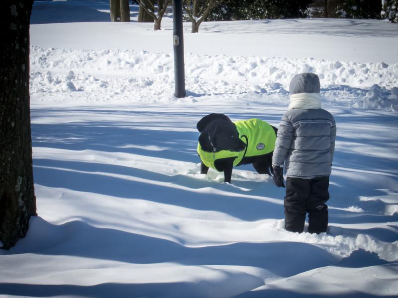 20140122_boys_snowy_day_1695.jpg
