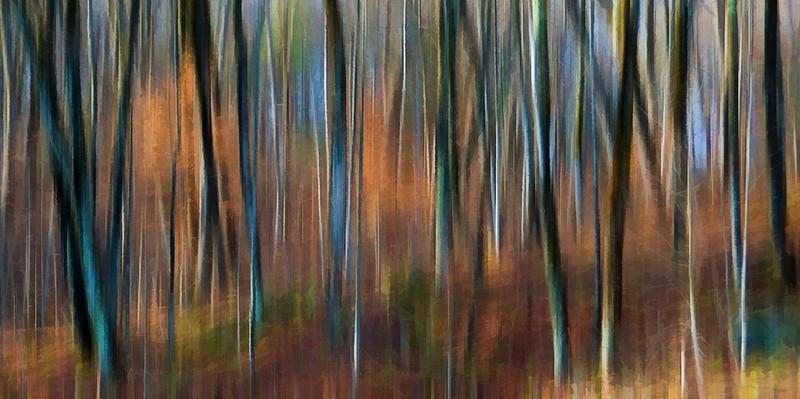 Autumn Forest Blur 2.jpg