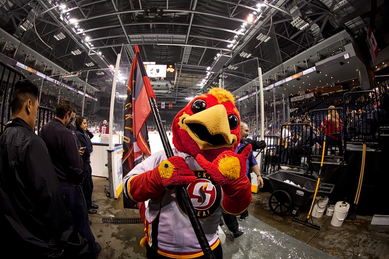 Stockton Heat 2018-11-16.jpg