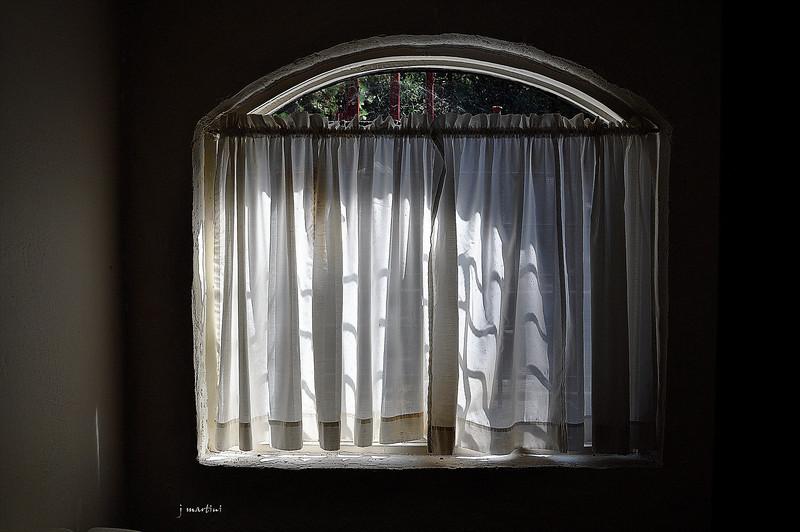 window shadows 8-15-2012.jpg