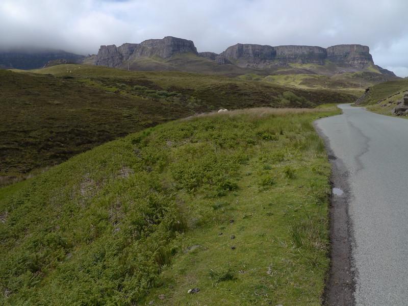 @RobAng Juni 2015 / Flodigarry, Isle of Skye / Eilean a'Cheo Ward  (Inner Hebridies), Scotland, GBR, Grossbritanien / Great Britain, 93 m ü/M, 2015/06/20 13:08:59