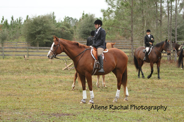 2016 January 9 Formal Hunt - Alma del Zorro