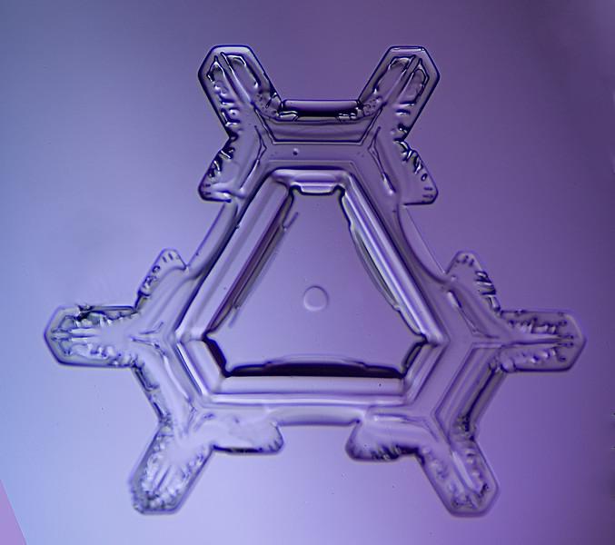 snowflake-5569-Edit.jpg