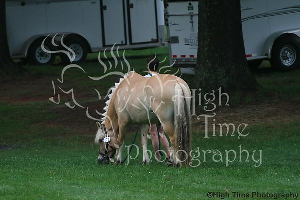 2014 Raleigh Summer Dressage