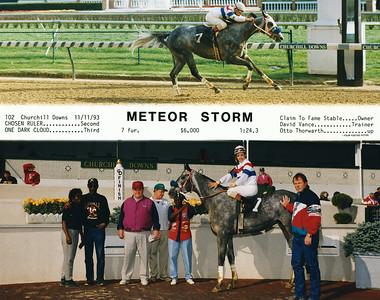 METEOR STORM - 11/11/1993