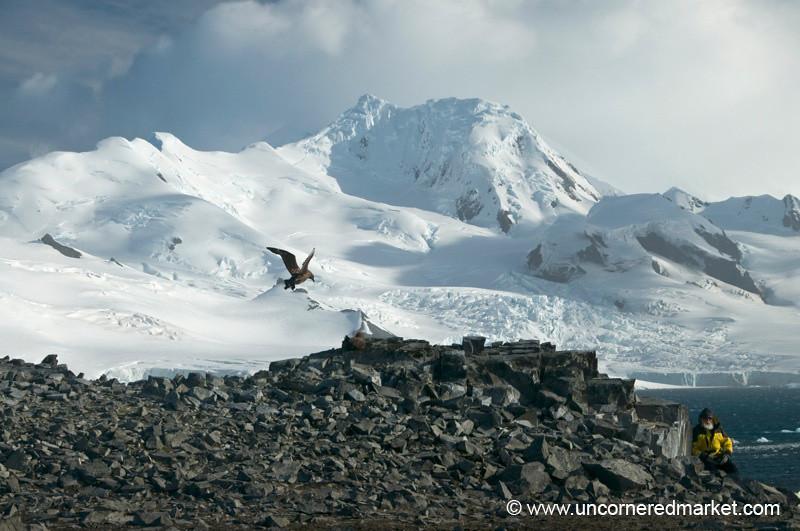 Mountain Vista at Half Moon Island - Antarctica
