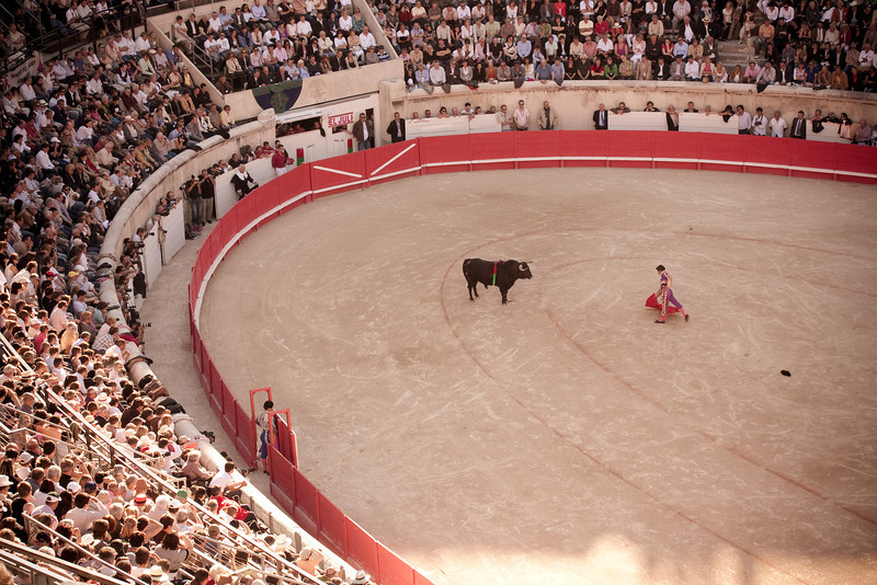 Bull fighting in Nimes