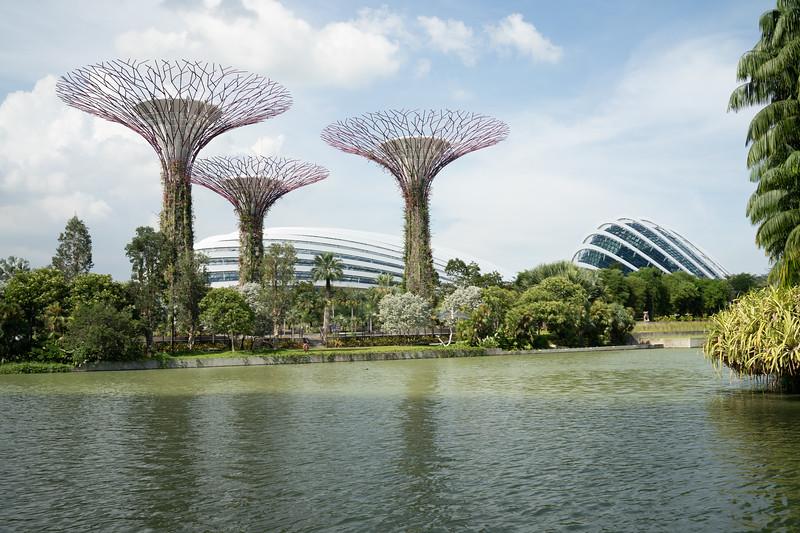 Singapore-19-080.jpg