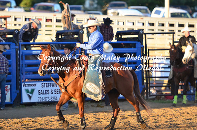 Saddle Bronc Section 3