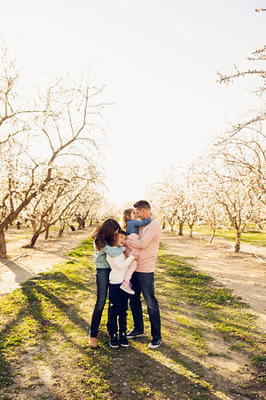 S Fuster Family Almond Blossoms 2021