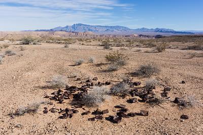 Nevada Environmental