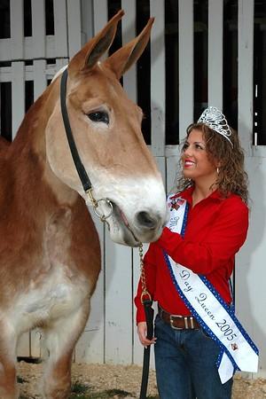 2005 Mule Day Queen