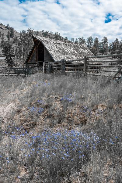 Old Barn - BC