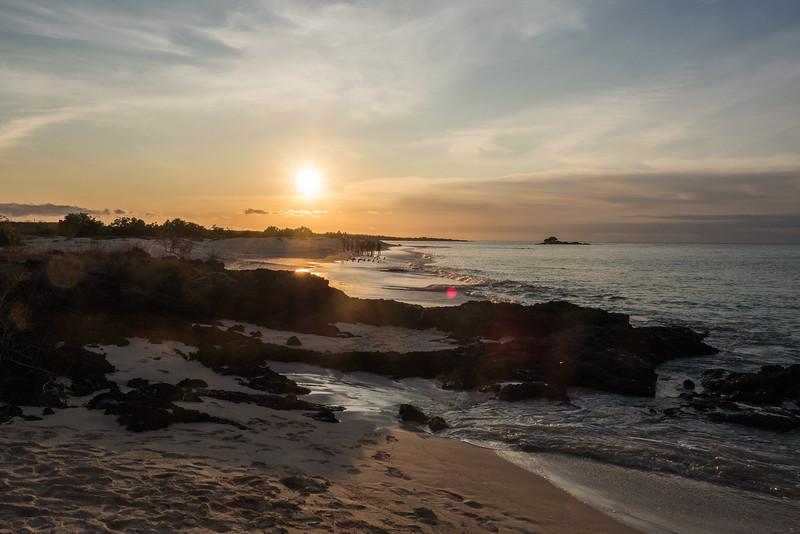 Galapagos-Best-016.jpg