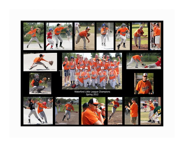 Orioles-Team Collage 2012