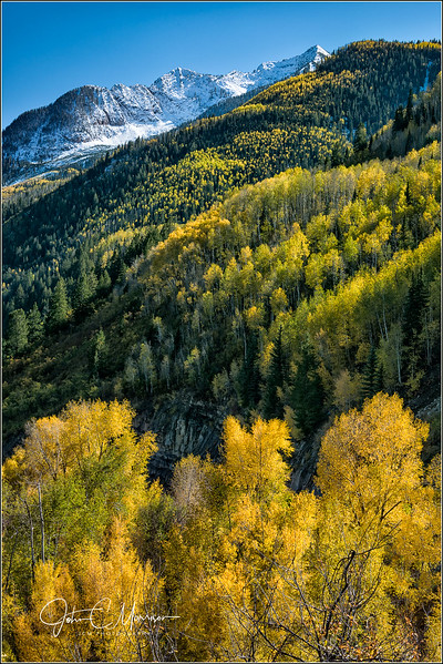 JM8_8622 Yellow Trees Mtn LPN r1.jpg