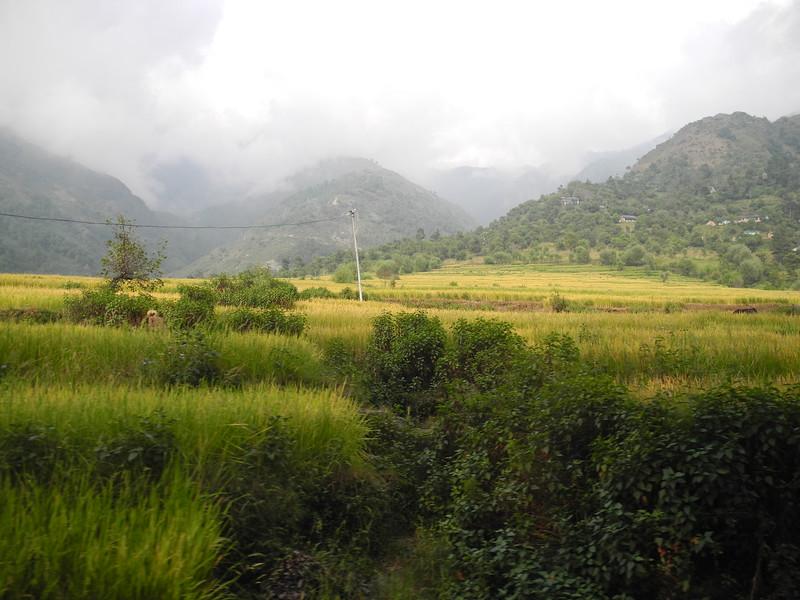 india2011 531.jpg