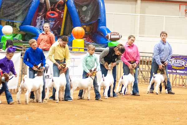 New Year Nationals Goat Jackpot Saturday