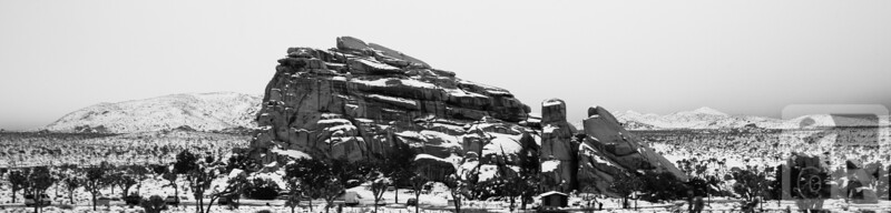 Turtle Rock and Snow