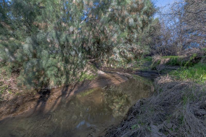 I-11 - Santa Cruz River #8