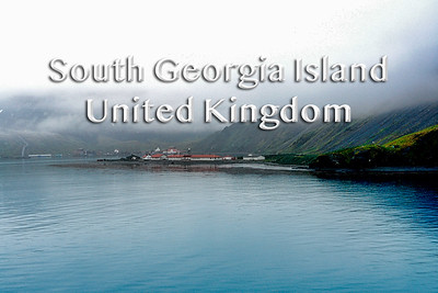 2008 02 04 | South Georgia Island