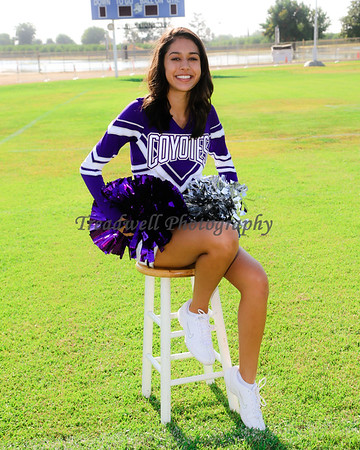 Denair High School Cheer 2017-2018