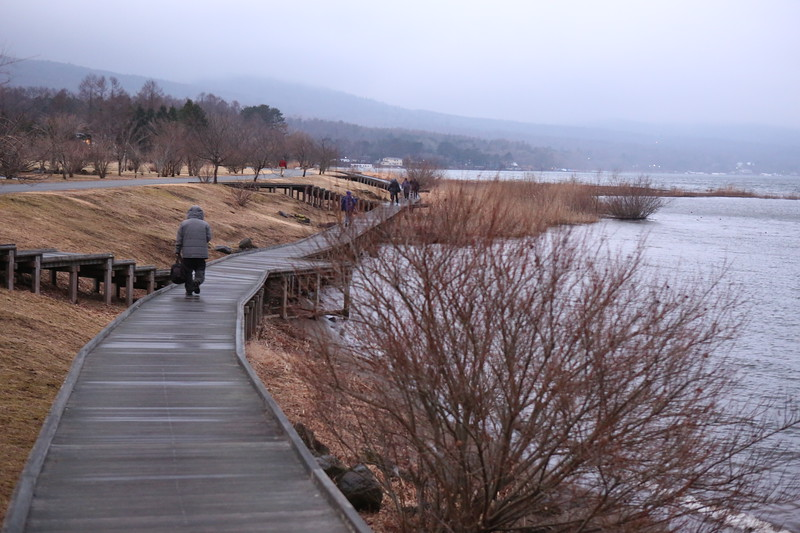 "In search of white swans on ""Swan Lake"" & an illusive Mount Fuji."