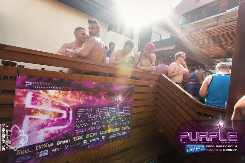 2014-05-10_purple06_844-3255145252-O.jpg