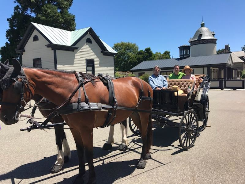 carriage ride with Edward at Maymont Estate